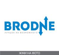 Brodne (логотип для компании по раскрутке и продвижению сайтов)