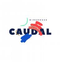 Сочный и живописный логотип винного дома
