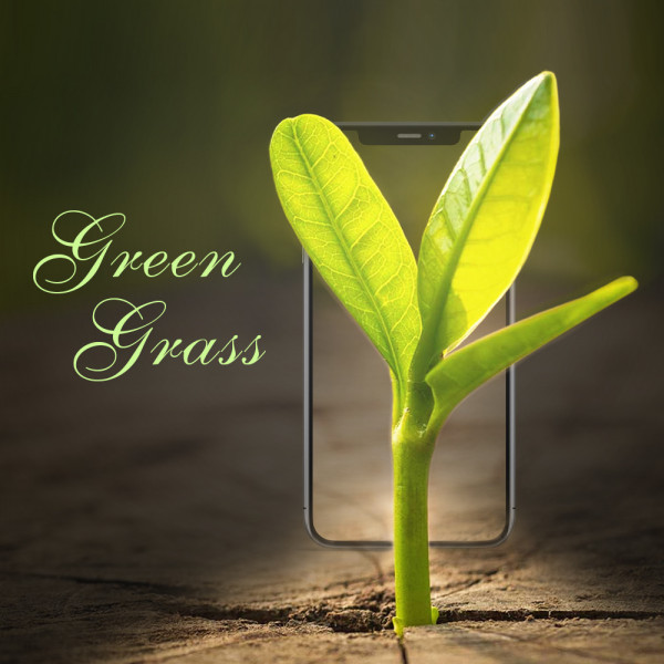 Green ( Сайт каталог )