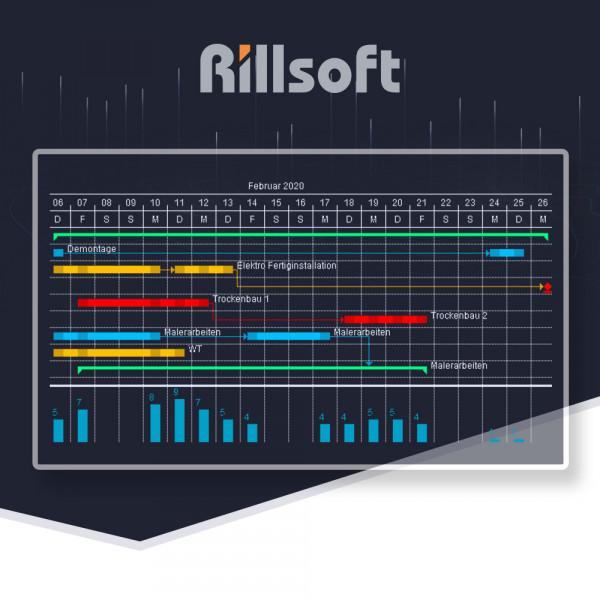 Rillsoft Project ( П.О. )