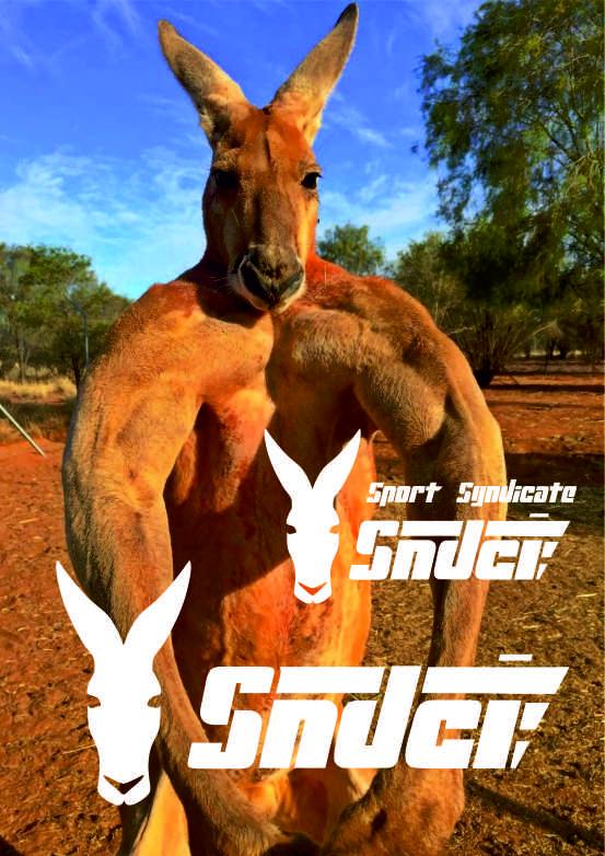 Создать логотип для сети магазинов спортивного питания фото f_757596b0a57ef861.jpg