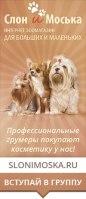 """Ведение и раскрутка группы ВКонтакте """"Косметика для собак. Товары для грумминга"""""""