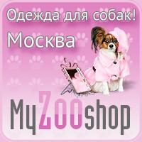 """Ведение, раскрутка групп вконтакте и на одноклассниках интернет-магазина  """"MyZooShop.ru - одежда для собак"""""""