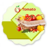 Лендинг семена томатов
