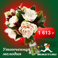 f_63651548c006107d.jpg