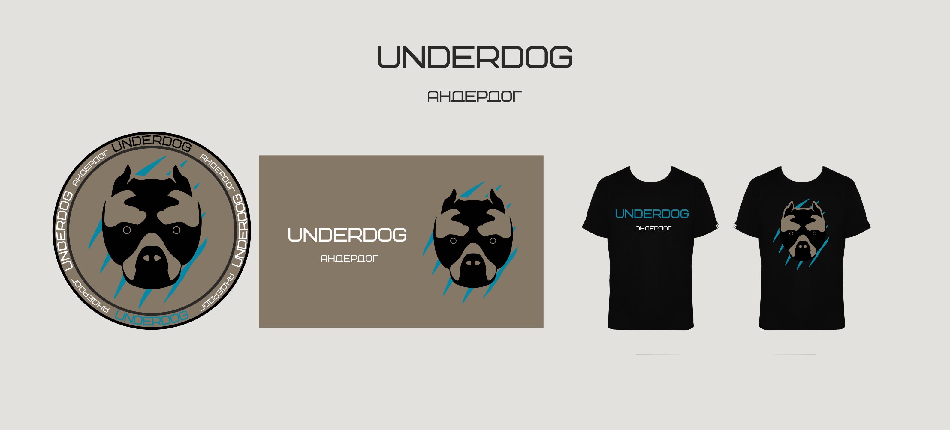 Футбольный клуб UNDERDOG - разработать фирстиль и бренд-бук фото f_8735caf295fdaa17.jpg