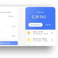 NanoBit Mobile App Design