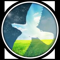 логотип  фото f_13555ceb33381068.png