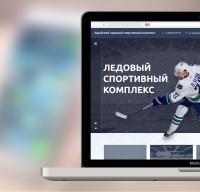 Зарайский ледовый спортивный комплекс