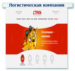 """Логистическая компания """"Стриж""""Контекстная реклама + Поисковое продвижение (SEO) ТОП 1-10 (43 запроса)"""