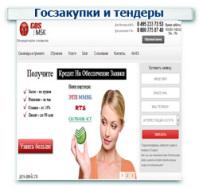 Госзакупки и  тендеры Контекстная реклама + Поисковое продвижение (SEO) ТОП 1-10 (115 запроса)