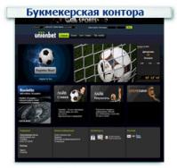 Букмекерская контора Контекстная реклама + Поисковое продвижение (SEO) ТОП 1-10 (151 запрос)
