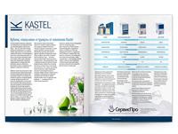 Рекламная статья Kastel