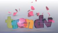 Заставка/Анимация логотипа портала TrenDV