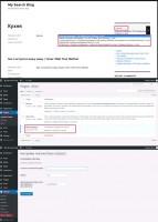 Плагин WordPress для изменения стандартного поиска на поиск, использующий API стороннего ресурса по Ajax