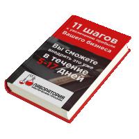 """Обложка книги """"11 шагов к увеличению прибыли Вашего бизнеса"""""""