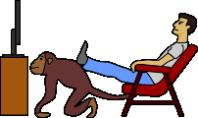 Человек и обезьяна 5