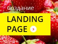 """Продающий landing page """"лендинг """" европейский стиль –  жми и..."""
