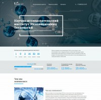 Landing page+WordPress - НИИ ИТ