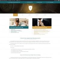 "Визитка+WordPress – Агенство безопасности ""Щит"""