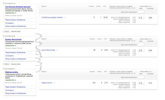 Google Ads и Яндекс Директ | Россия | Женское белье | Интернет-магазин