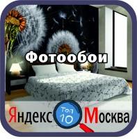 Комплексное продвижение сайта www.fotooboi.ru