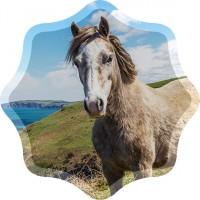 Altai Eco Конный туризм на горном Алтае - лендинг