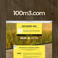Презентационный сайт компании 100m3