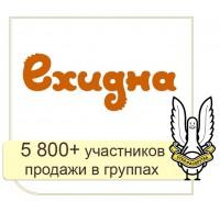 VK, FB, ЖЖ - Ехидна: продвижение бренда в социальных сетях