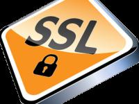 Ssl сертификаты для сервера linux – nginx, apache. Установка, выбор