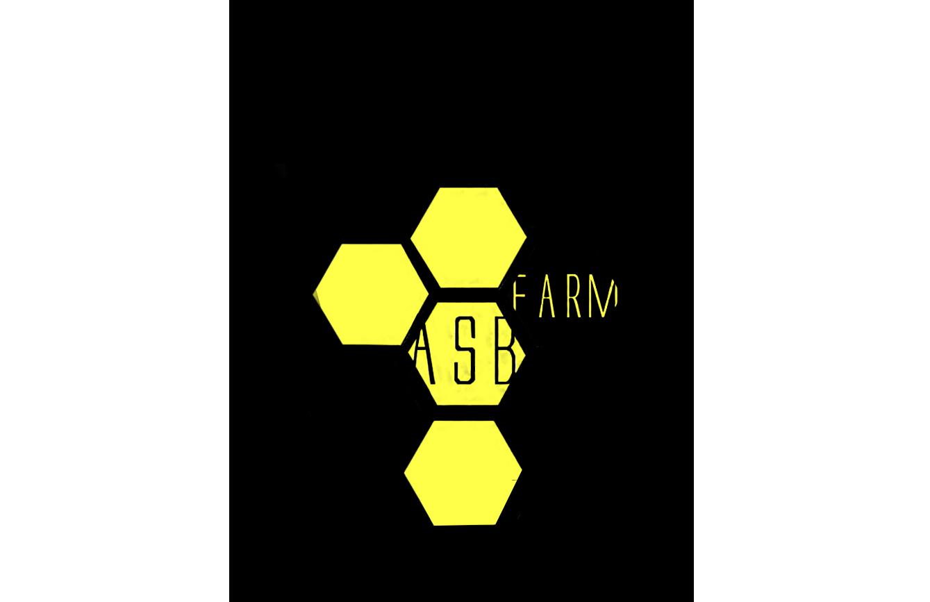 Разработка 3-4 видов логотипа фото f_2635a5b8e5f8df4c.png