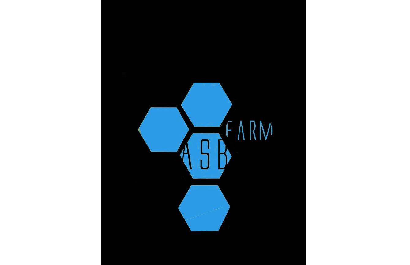 Разработка 3-4 видов логотипа фото f_6585a5b9668a47ff.png