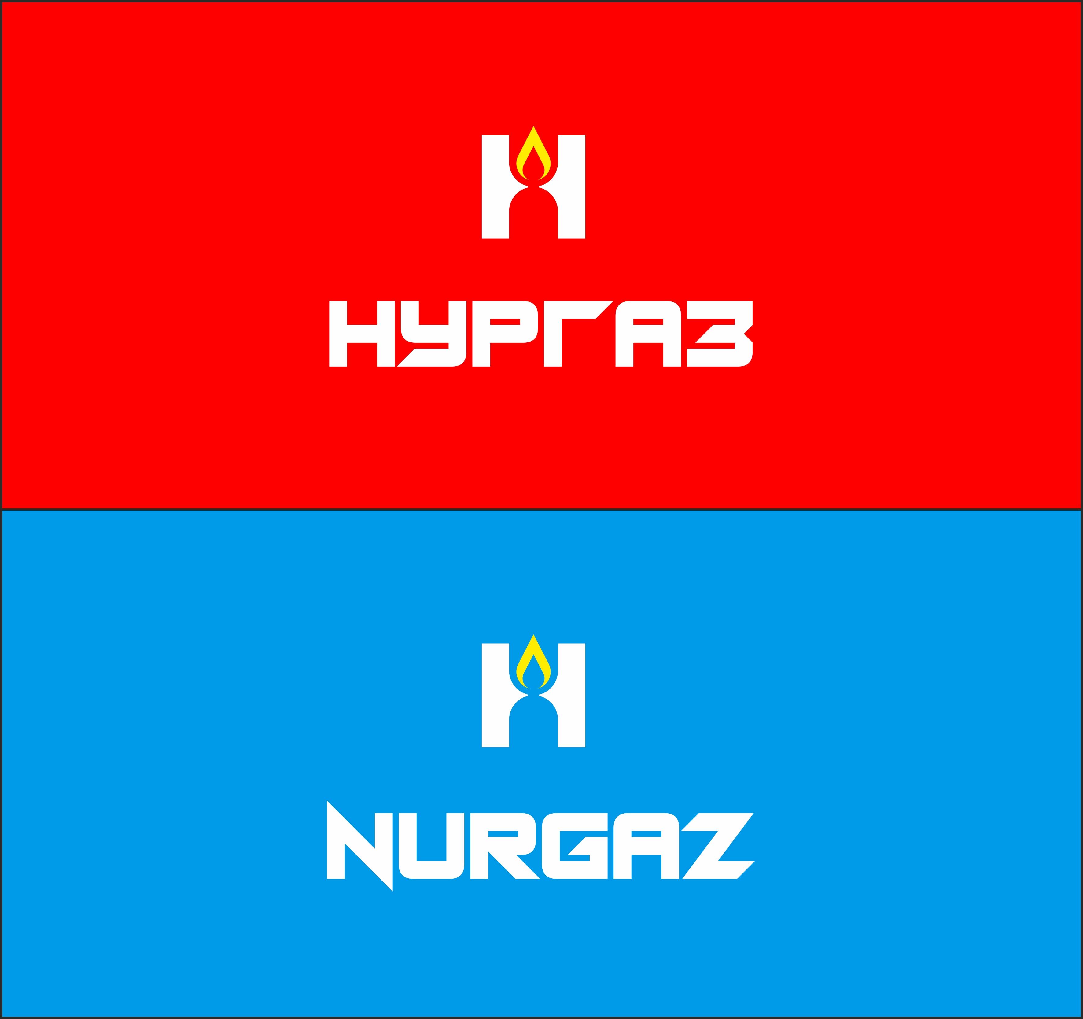 Разработка логотипа и фирменного стиля фото f_6935d9b3467528bf.jpg