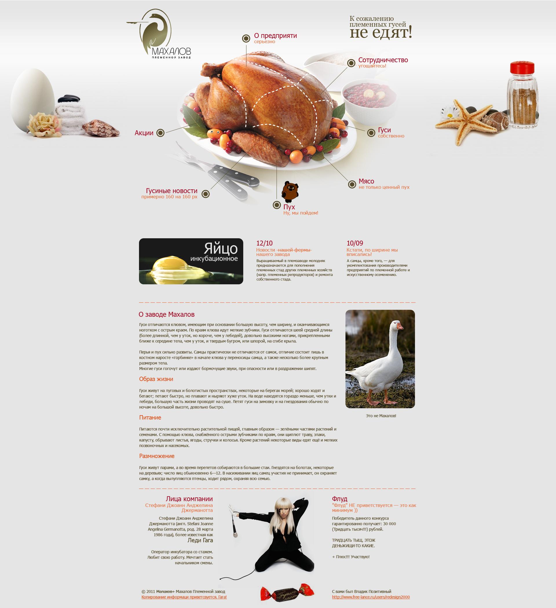 Редизайн сайта. фото f_4e7aeb68f04c0.jpg