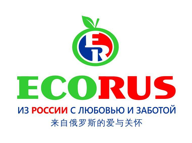 Логотип для поставщика продуктов питания из России в Китай фото f_1905eb262dd8e8de.jpg