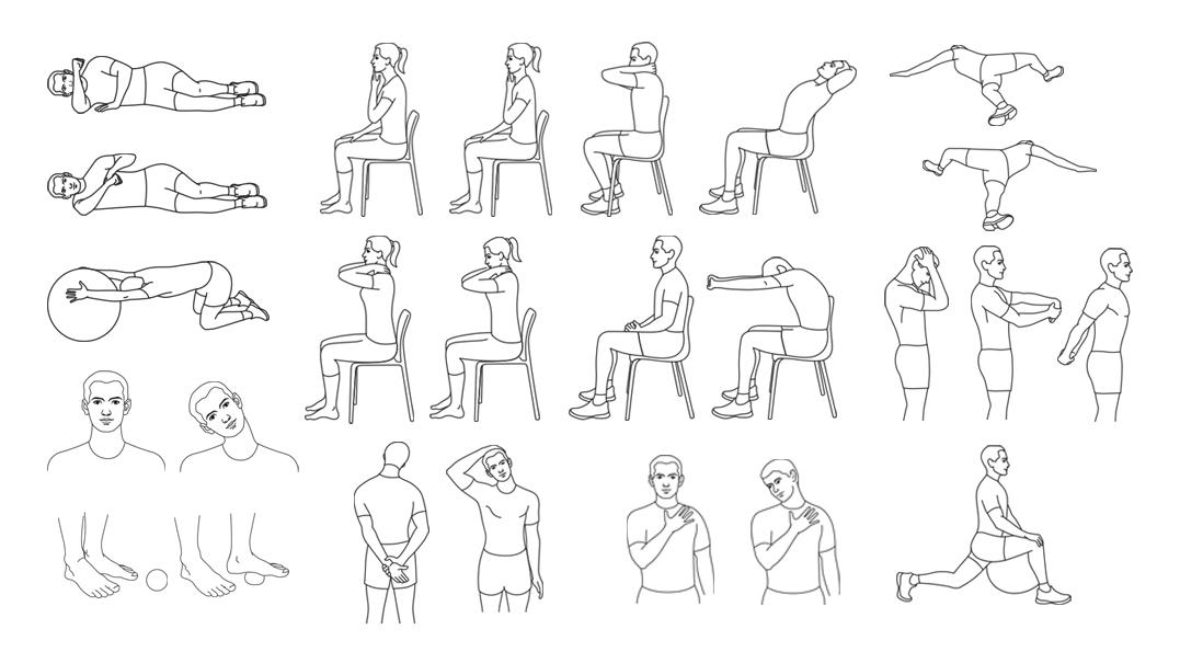 Иллюстрирование физ. упражнений