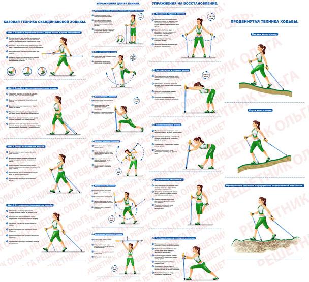 Иллюстрирование упражнений по скандинавской ходьбе