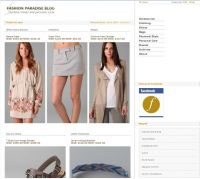 Оптимизация американского Fashion блога