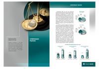 Пробизнесбанк разворот годового отчета (2004)