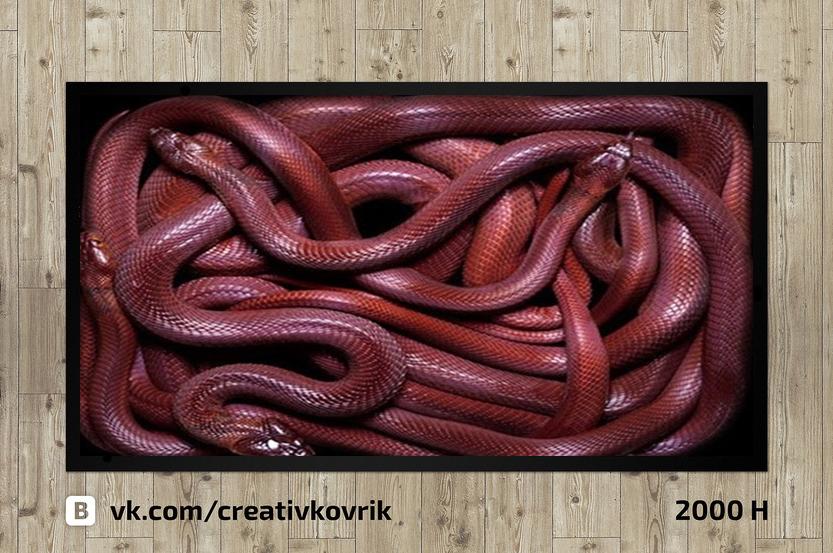 Сделать дизайн приддверного коврика фото f_295558eeffb36f2c.jpg