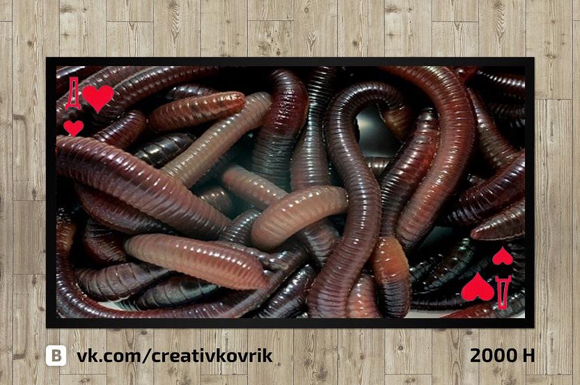 Сделать дизайн приддверного коврика фото f_913558ef0cf8b2e4.jpg