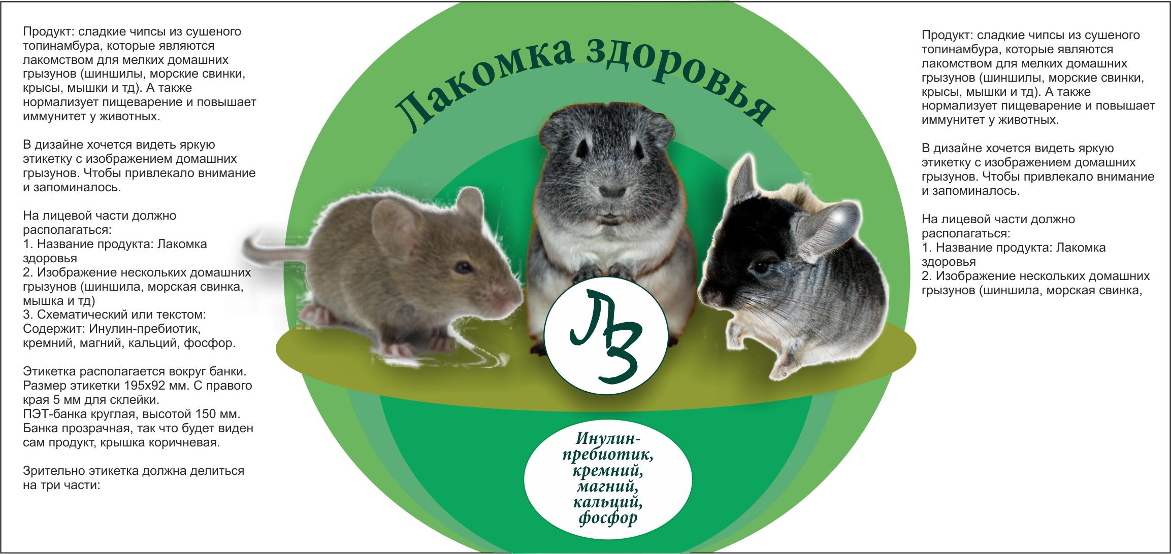 Дизайн этикетки на ПЭТ-банку лакомства для домашних грызунов фото f_01753a5c18f81475.jpg
