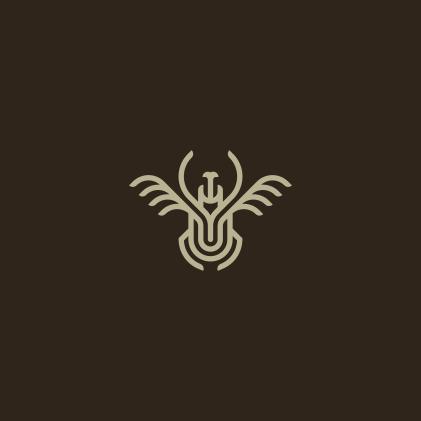 megasoma beetle