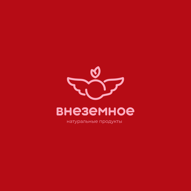 """Логотип и фирменный стиль """"Внеземное"""" фото f_3435e79ba08b0777.jpg"""