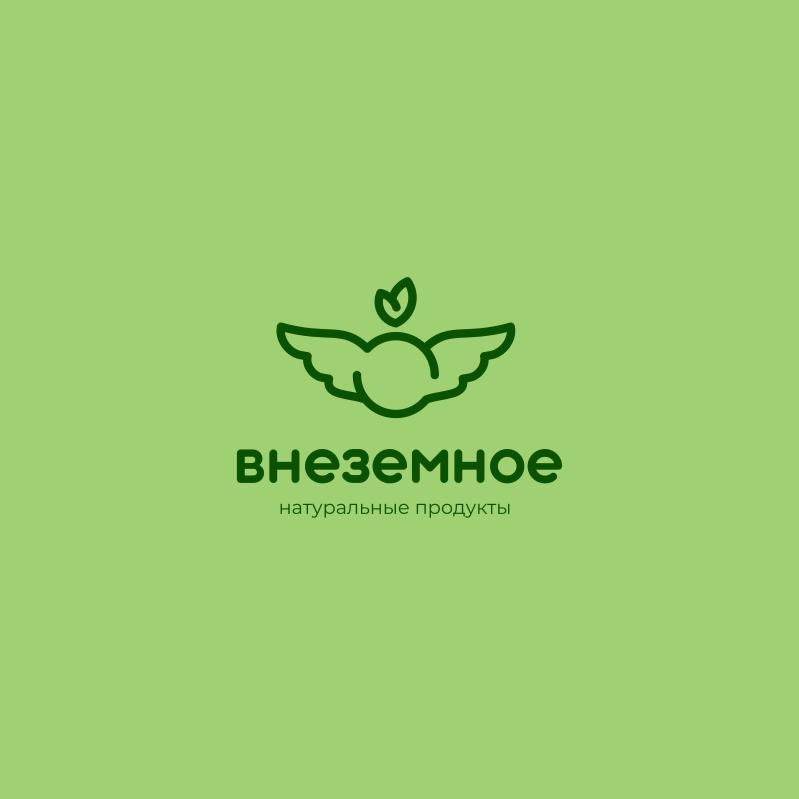 "Логотип и фирменный стиль ""Внеземное"" фото f_4745e79ba15bacd0.jpg"