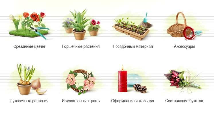 Тизеры для azaliagroup.ru (Профподход)