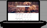 Doge.ru - Адаптивная, кроссбраузерная верстка