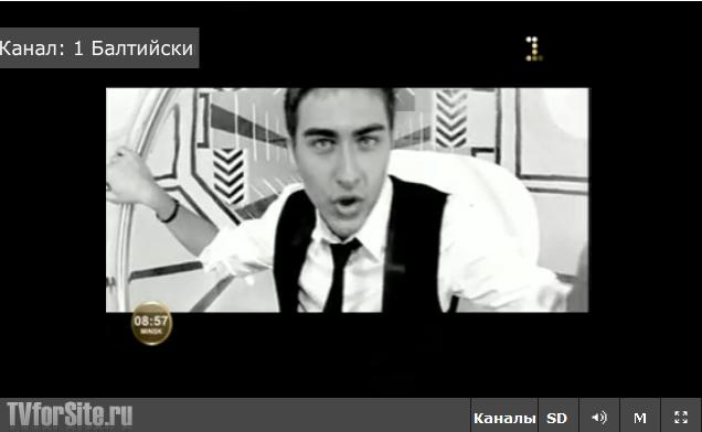 плеер online вещания (www.tvforsite.ru)