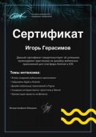 Диплом - Веб-дизайн и юзабилити
