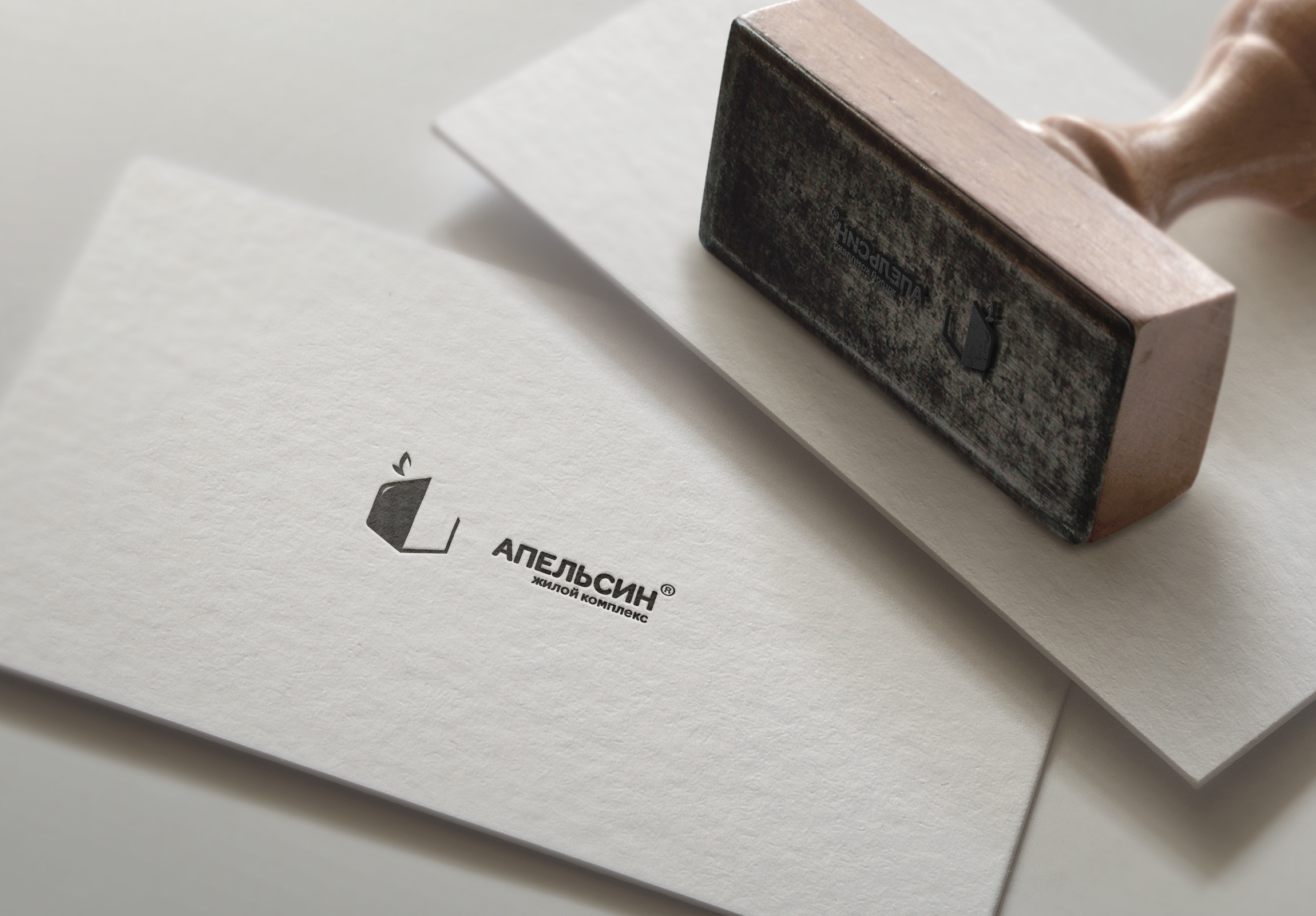 Логотип и фирменный стиль фото f_2605a63bc114ba87.jpg